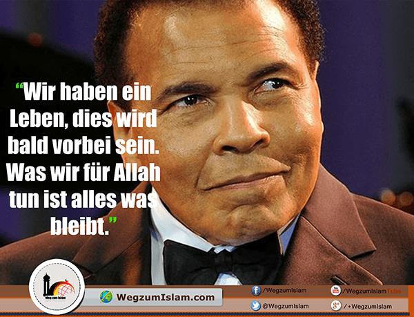 Die Besten 30 Zitate Und Sprüche Von Muhammad Ali Weg Zum Islam